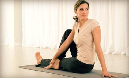 Elements Yoga & Wellness Center - Elements Yoga & Wellness Center in Darien