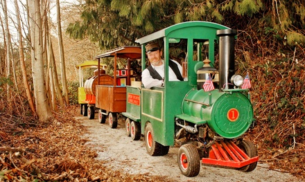 $11 for a Miniature Train Ride for Four at Train Rides at Country Village ($16 Value)