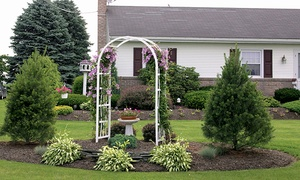 National Metal Industries: $137 for Two-Hoop Arbor at National Metal Industries ($275 Value)
