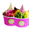 40% Off Frozen Yogurt at 16 Handles