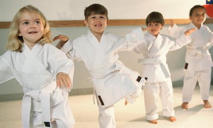 $18 for $50 voucher — Tiger Rock Martial Arts of the Valley