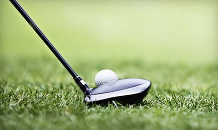 Driving Force Golf - Broomfield Industrial Park: Indoor Golf Practice, Simulator Play, or Lessons at Driving Force Golf (Up to 53% Off). Four Options Available.