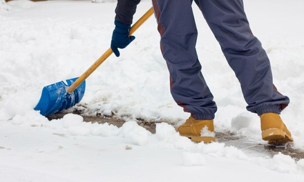 Two Visits for Snow Removal at Hanes Snow Removal (56% Off)