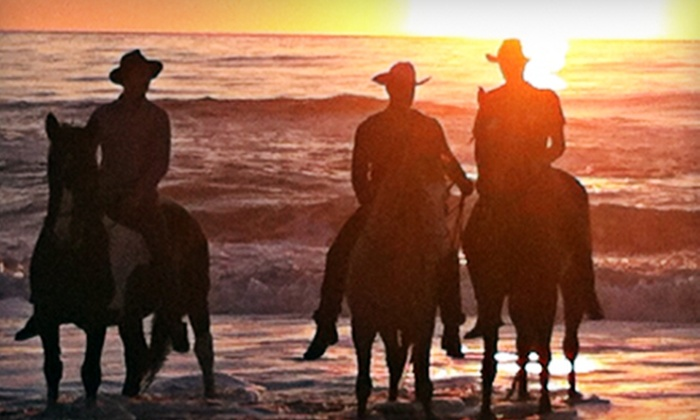 "Virginia Beach Horseback - Virginia Beach: $75 for a One-Hour ""Swimming on Horseback"" Ride for Two from Virginia Beach Horseback ($150 Value)"