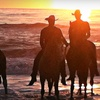 """Half Off a """"Swimming on Horseback"""" Ride to North Bay"""