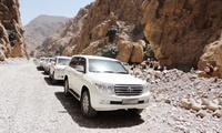 Hatta Mountain Safari for One or Two with Phoenix Tours (50% Off)