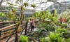 Rhododendron Species Botanical Garden - Lakeland North: Visit for 2 or 4 or One-Year Family Membership to Rhododendron Species Botanical Garden (50% Off)