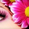 Half Off Eyelash Extensions at Faccia Bella