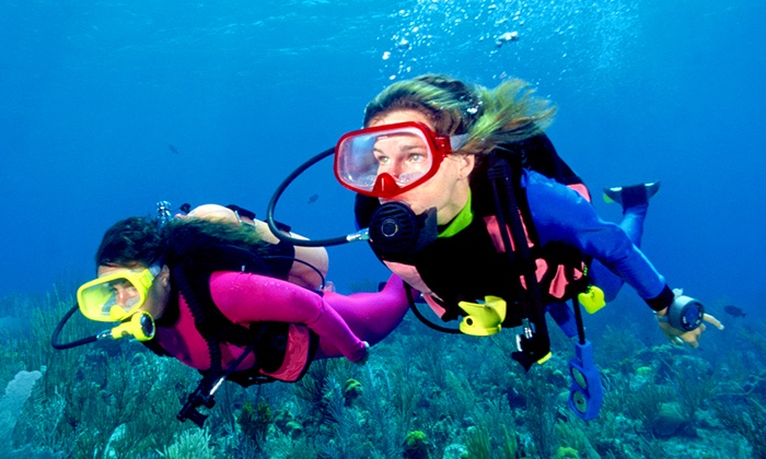Sea Lions Dive Center - Hanover Park: Two-Day or Two-Week Open-Water Certification Scuba-Diving Course at Sea Lions Dive Center (Up to 52% Off)
