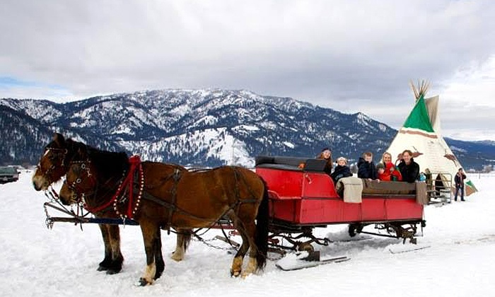 Garden Valley Trail Rides - Garden Valley Trail Rides: Group Horse-Drawn Sleigh Ride for Two, Four, or Eight from Garden Valley Trail Rides (Up to 54% Off)