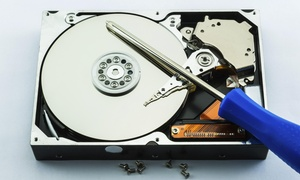 Information Technologies And Training: Computer Repair with Virus Removal and Hard-Drive Cleanup from Information Technologies and Training (45% Off)