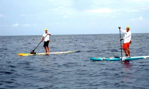 Liquid Surf and Sail: Half-Day Standup Paddleboard or Kayak Rental from Liquid Surf and Sail (Up to 52% Off)