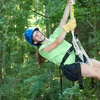 Half Off Zipline Tour from Honeysuckle Hill Farm
