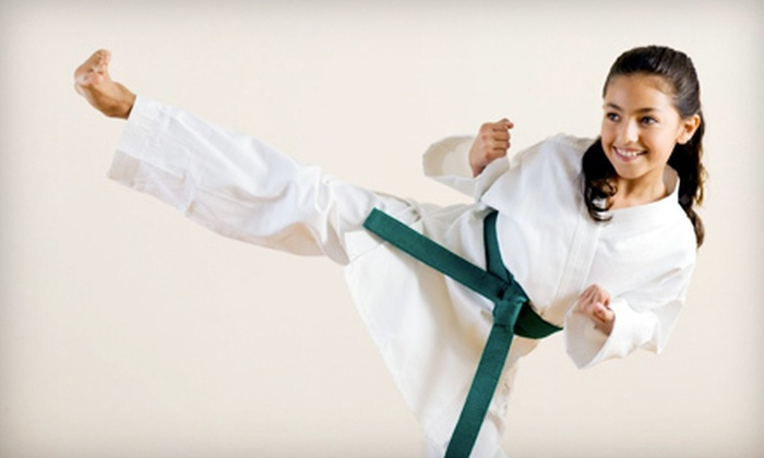 Tien Lung Taekwon-Do Club - South location: $89 for One Week of Summer Day Camp at Tien Lung Taekwon-Do Club ($225 Value). Nine Weeks and Two Locations Available.