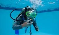 Schnuppertauchen oder Grundtauchschein mit Leih-Ausrüstung und Tauchgang bei Joy Venture Diving (bis zu 62% sparen*)