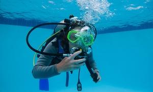 Joy Venture Diving: Schnuppertauchen oder Grundtauchschein mit Leih-Ausrüstung und Tauchgang bei Joy Venture Diving (bis zu 62% sparen*)