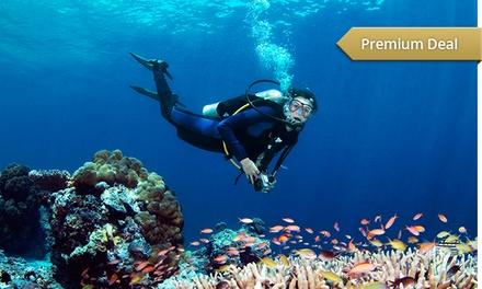Tauchkurs oder Ausbildung zum Open Water Diver bei Diving Erich Dörr ab 89,90 € (bis zu 71% sparen*)