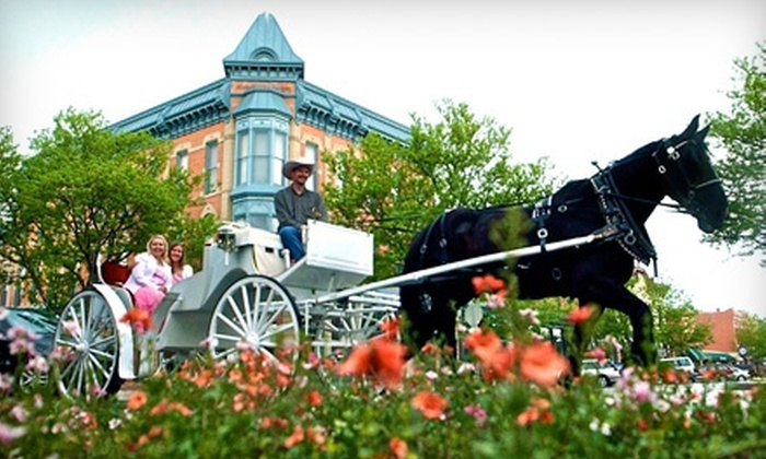 Colorado Carriage and Wagon - Colorado Carriage and Wagon: Horse-Drawn Wagon Ride for One or Carriage Ride for Two from Colorado Carriage and Wagon (Up to 54% Off)