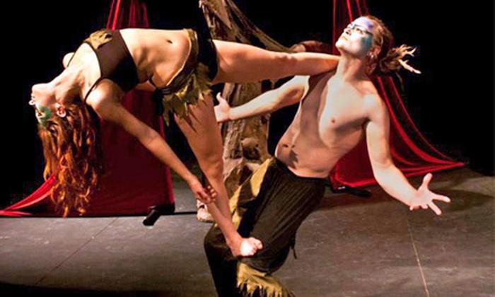 Le Cirque Vagabond - Sierra Vista Villas Of Reno: $50 for $100 Worth at Le Cirque Vagabond