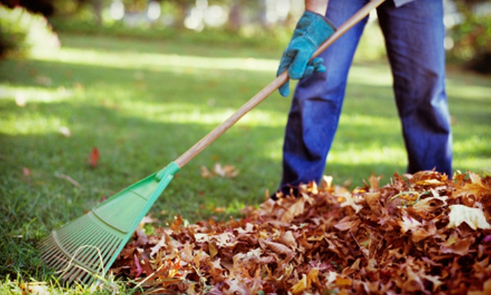 Premium Lawn Care - Lincoln: Fall Cleanup with Mowing and Debris Removal, or Complete Edging from Premium Lawn Care (Up to 53% Off)