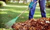 Premium Lawn Care: Fall Cleanup with Mowing and Debris Removal, or Complete Edging from Premium Lawn Care (Up to 53% Off)
