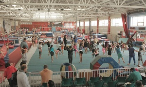 Peninsula Gymnastics: $35 for Four Weekly Beginners' Gymnastics Classes for One Child at Peninsula Gymnastics ($126 Value)