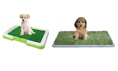 Lettiera per cani in erba sintetica. Varie dimensioni disponibili
