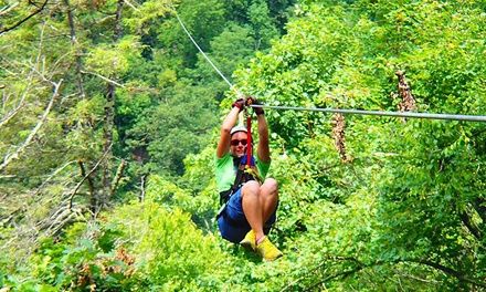 Zipline Excursion for Two from Sky Valley Zip Tours (Up to 50% Off)