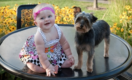 $39 for Up to Two-Hour Family or Children's Photo Shoot with Prints from Advantage Photography (Up to $500 Value)