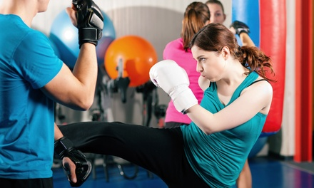 One Month or 10 Weeks of Women's Kickboxing and Boot-Camp Classes at Platinum Mixed Martial Arts (Up to 70% Off)