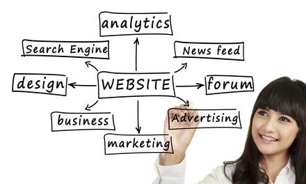 Website Design and Hosting Services at Platinum Design Co. (45% Off)