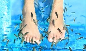 Jova Nails: 1 séance de fishpedicure en solo ou en duo avec modelage soin et vernis dès 19,99 € à Jova Nails