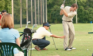 Golf Performance Clinic: Assessment with Swing Analysis Sessions at Golf Performance Clinic (Up to 61% Off). Four Options Available.