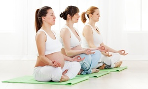 The Yoga Nest: Four Weeks of Prenatal Yoga Classes at The Yoga Nest (64% Off)