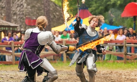 $17 for One-Day Admission for One to The Georgia Renaissance Festival on April 14–June 3 ($23.95 Value)