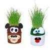 Eye Grow Grass Heads