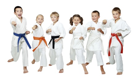 One or Three Months of Karate Classes at The Movement Workshop (Up to 56% Off)