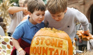 Stone Mountain Park: Adventure Passes to the Pumpkin Festival at Stone Mountain Park (Up to 32% Off). Two Options Available