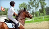 Diamond Hill Equestrian Center - Longswamp: 2 or 4 Private Riding Lessons or 4 or 8 Semiprivate Riding Lessons at Diamond Hill Equestrian Center (Up to 56% Off)