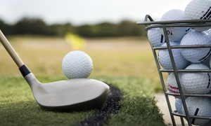 JK's World Of Golf: Driving Range Balls - $5.50 for a Half-Bucket of Balls or $37 for Four Buckets at JK's World Of Golf (Up to $52 Value)