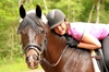 $35 for a 45 minute Introductory Riding Lesson ( $70 Value)