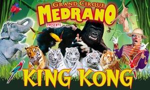 Cirque King Kong: 1 place en tribune d'honneur à 10€ pour le Cirque Medrano - Tournée King Kong