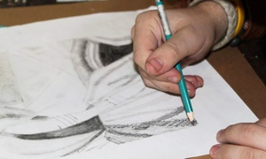 Pastimes for a Lifetime:  Five Drawing Classes with a Project Booklet at Pastimes for a Lifetime (50% Off)