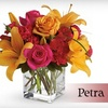 Half Off at Petra Flowers