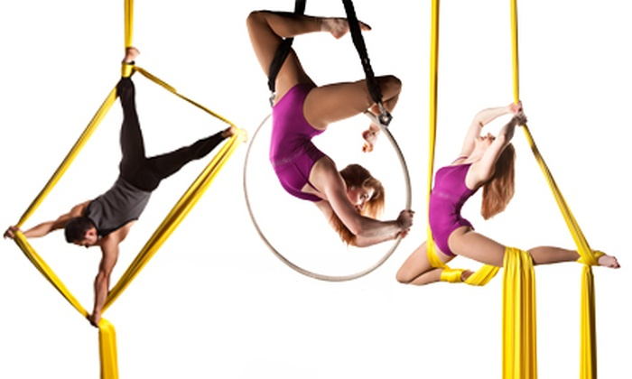 Image result for aerial arts