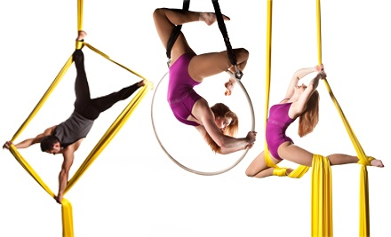 Aerial Sampler Workshop (a $25 value) - Aerial Arts of Rochester in Rochester
