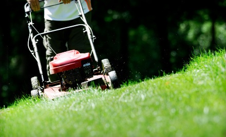 One Lawn-Mowing Visit with Edging and Grass Blowing on Up to a Quarter Acre (a $45 value)  - Perennial Lawn & Landscape in