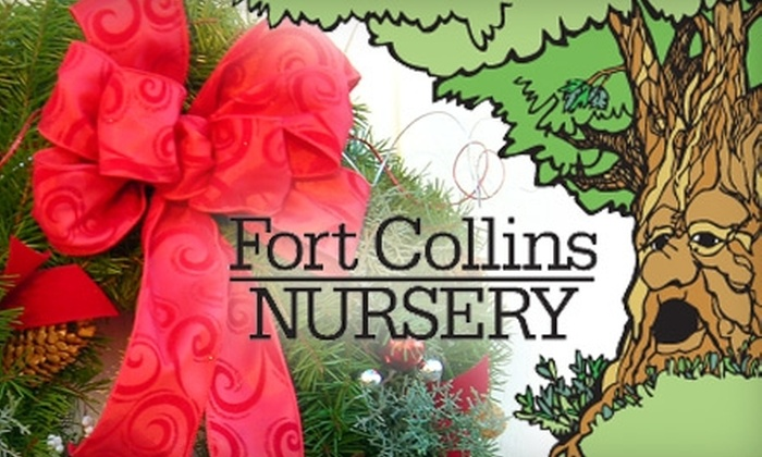 51 Off At Fort Collins Nursery