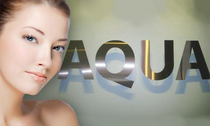 Aqua Aesthetic Studio - Castle Knoll Farms: $45 for $120 Worth of Spa Services at Aqua Aesthetic Studio