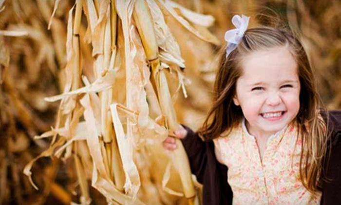 Cornbelly's Corn Maze and Pumpkin Fest - Salt Lake City: $18 for Season Pass to Cornbelly's Corn Maze and Pumpkin Fest in Lehi ($37.31 Value)